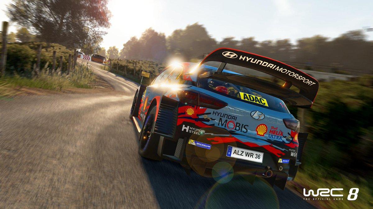 WRC graphics