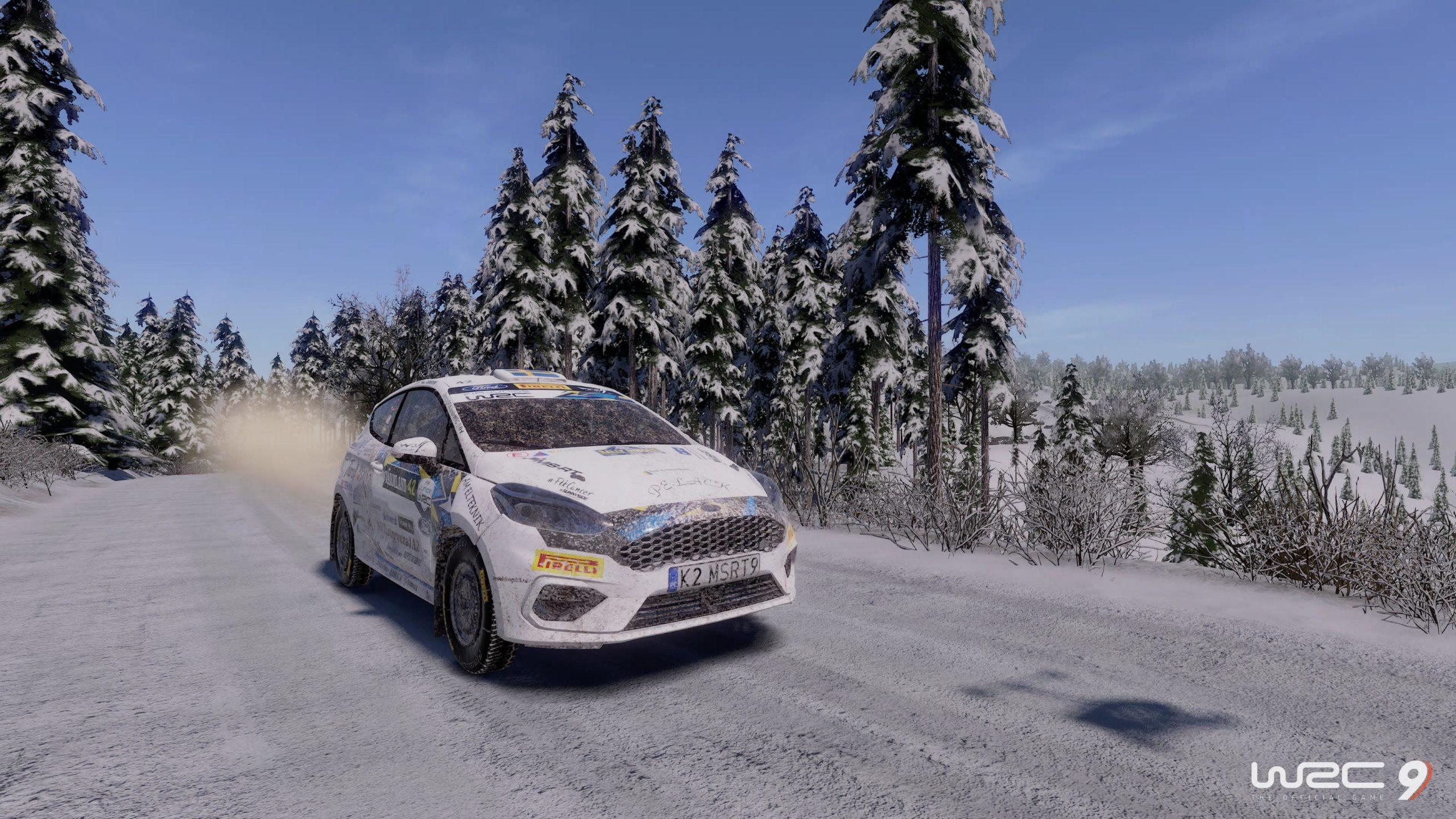 WRC 9 FIA World Rally Championship_20201125144230