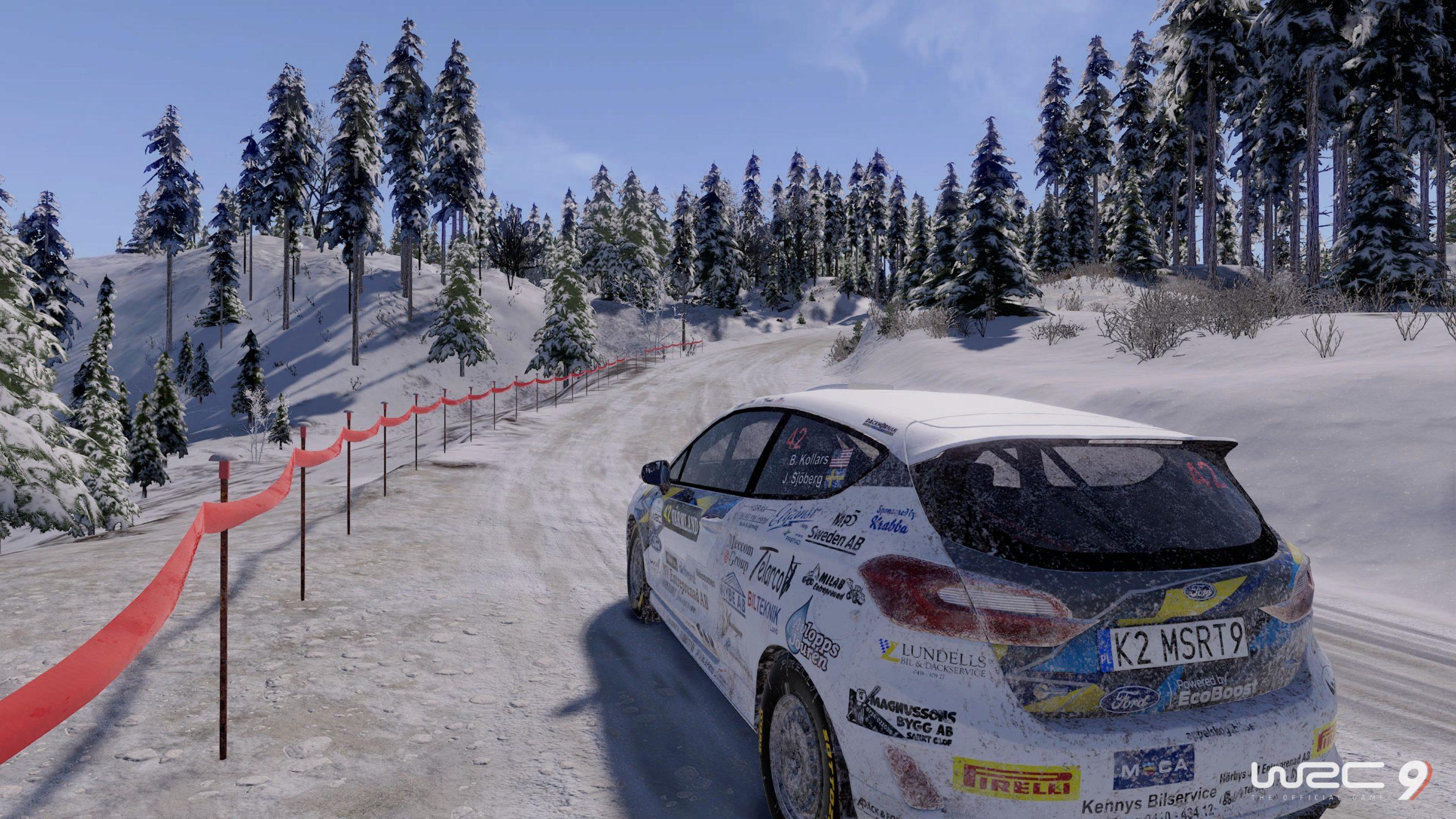 WRC 9 FIA World Rally Championship_20201125144447