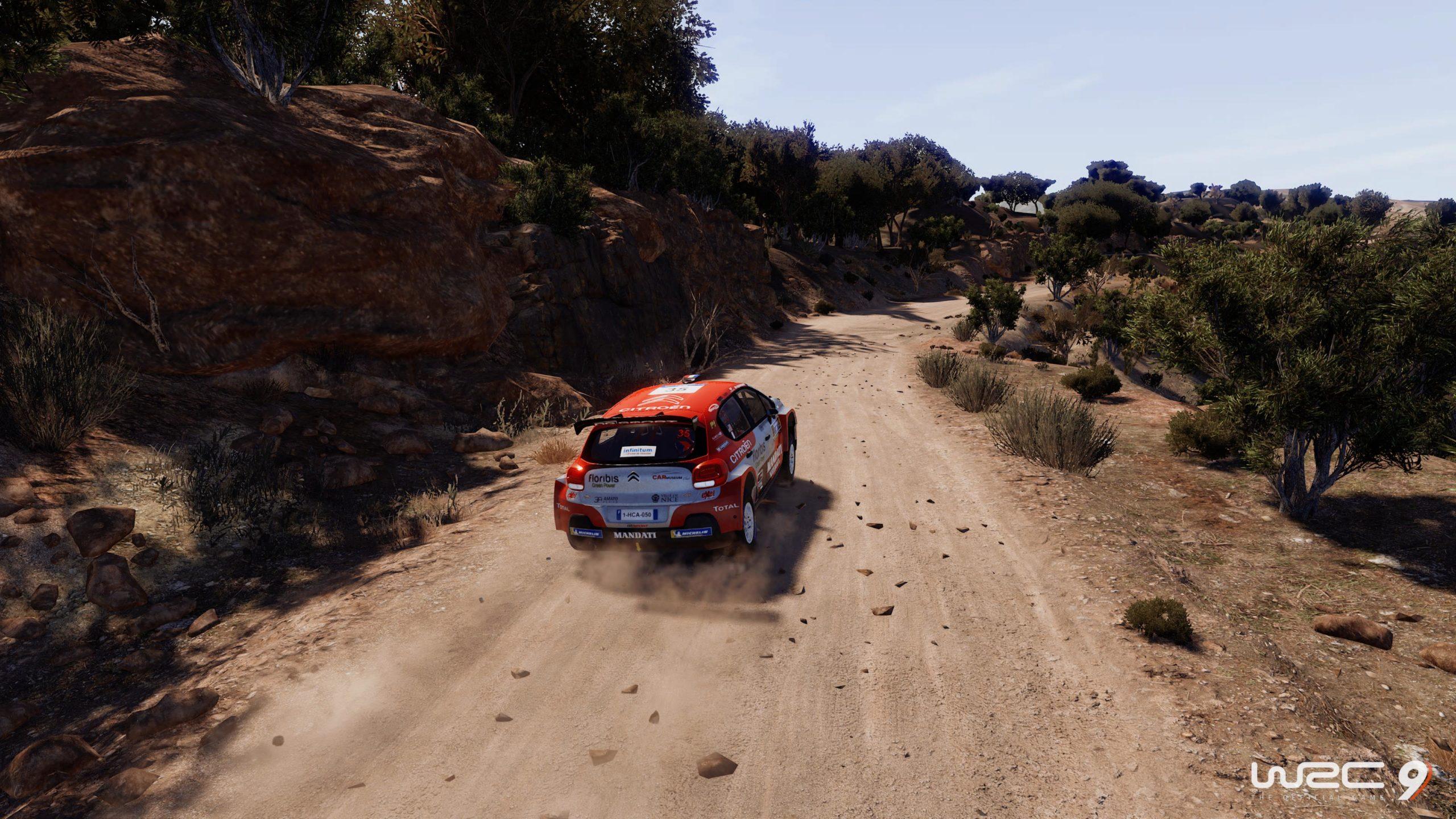 WRC 9 FIA World Rally Championship_20201202134318