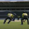 cricket 19 dlc