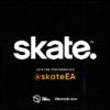 skate behind the scenes